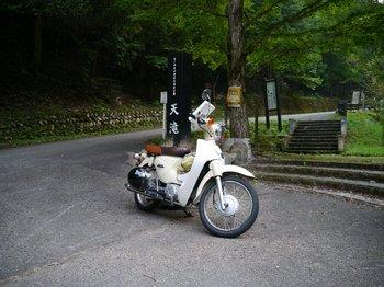 P1020019.jpg